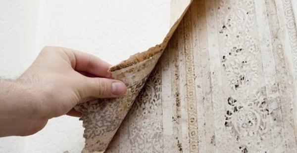 Как убрать повышенную влажность в помещении