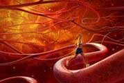 Як знизити холестерин в крові: поради та відео