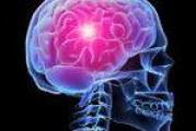 Віруси розвинули мозок древнього людини