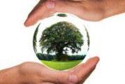 Професія еколог: характеристика та основні особливості