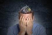На скільки відсотків працює мозок людини