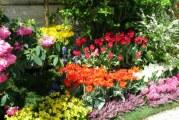Як створити красивий і стильний квітник. Загальні правила