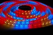 Світлодіодні технології для городу на підвіконні