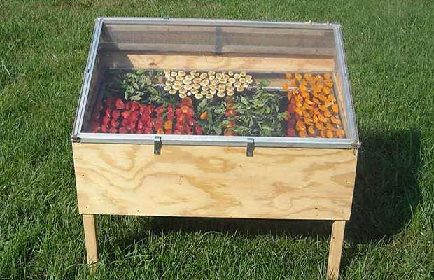 Сушилка для фруктов и овощей на даче