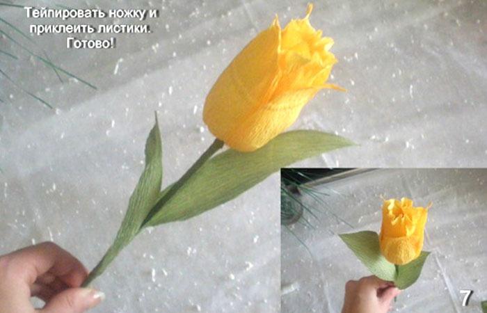 Тюльпаны из бумаги своими руками пошаговое фото легкие для детей 5