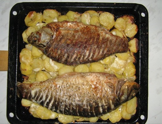 Сазан рецепты в духовке с картошкой с пошагово
