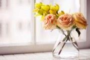 Збільшуємо життя квітів у вазі — як зберегти квіти довше