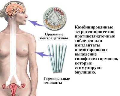 sperma-gormonalniy-sostav-polza-zhenshine