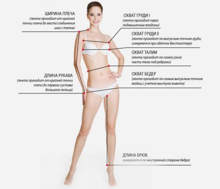 Як вимірати грудб фото 194-361