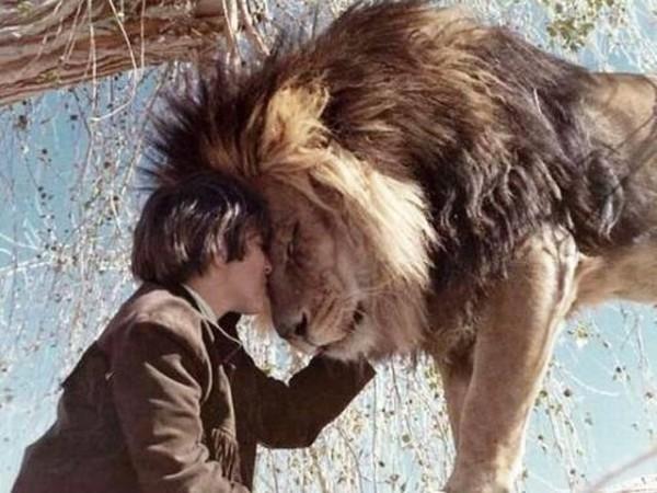 стесняясь люди по имени лев сцены проникновения фаллосов