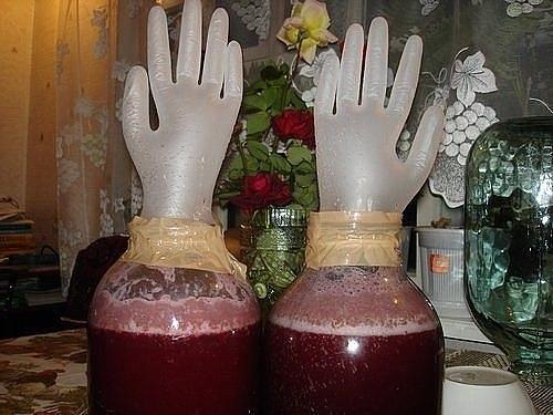 Сливовое вино в домашних условиях простой рецепт с фото пошагово