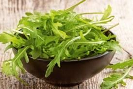 Корисні властивості руколи, протипоказання і рецепти з салатом