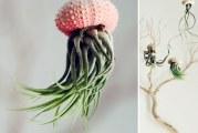 Найоригінальніші горщики та кашпо для кімнатних рослин