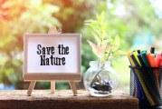 Як дбати про природу: 7 рекомендацій