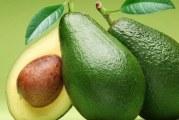 Авокадна дієта — суть і принципи, зразкове меню і рецепти з фото