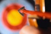 Порада 1: Як зробити лук і стріли в домашніх умовах