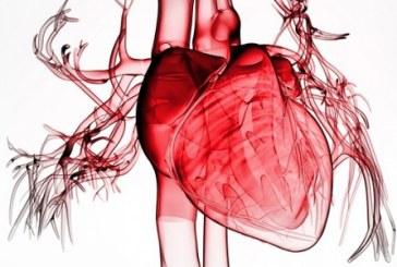 Обширний інфаркт — перші ознаки, діагностика, стадії, лікування і відновний період