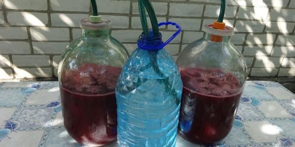 Как сделать великолепное вишневое вино 213