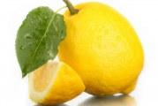 Як доглядати за лимоном в домашніх умовах