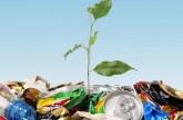 Правила безопасной утилизации биологических отходов